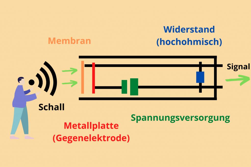 Aufbau eines Kondensatormikrofons - Sunset Music